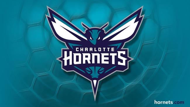 The Charlotte Hornets new primary logo. via nba.com